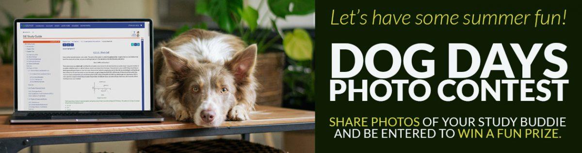 Dog Days 2021 Photo Contest